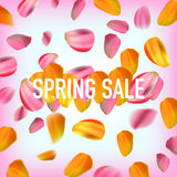 Spring sale banner against falling petals Royalty Free Stock Photography