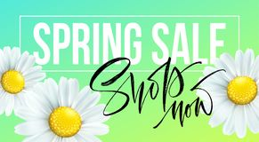 Spring sale banner, background with daisy flowers. Seasonal discount. Vector illustration. EPS10 vector illustration