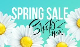 Spring sale banner, background with daisy flowers. Seasonal discount. Vector illustration. EPS10 stock illustration