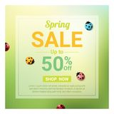 Spring sale banner with colorful ladybugs. Vector , illustration Royalty Free Stock Image