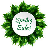 Spring sale banner Royalty Free Stock Photo