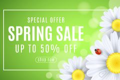 Spring sale banner. Ladybug creeps on the flowers of daisies. Seasonal design for your business. Water drops. Lights bokeh. Frame. With text. Vector stock illustration