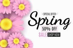 Spring sale banner. Pink flowers of chamomile. Seasonal poster. Special offer. Vector illustration Royalty Free Stock Photography