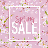 Spring Sale Banner. Sale background. Big sale. Floral Sale Tag. Royalty Free Stock Image