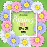 Spring sale banner. Square white frame. Multicolored flowers of chamomile on a green background. Seasonal flyer. Special offer. Ve Stock Photos