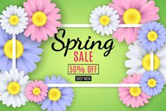Spring sale banner. Square white frame. Multicolored flowers of chamomile on a light green background. Seasonal flyer. Special off. Er. Vector illustration. EPS Stock Photography
