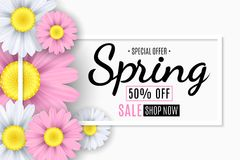 Spring sale banner. Square white frame. Pink and white flowers of chamomile. Seasonal flyer. Special offer. Vector illustration Royalty Free Stock Image
