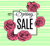 Spring Sale banner template with pink outline roses on green stripped background. Vector Stock Photography