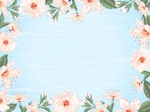 Spring sale banner. Vintage spring floral background.Border with cherry blossom flowers on background of wooden blue boards. Vector illustration Royalty Free Stock Photography