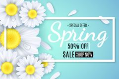 Spring sale banner. White flowers of chamomile on a light blue background. Seasonal poster. Water drops. Special offer. Vector ill Stock Image