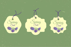 Spring sale banners poster tag design, voucher template. Big set. Floral frame for text, isolated on white background Stock Photo