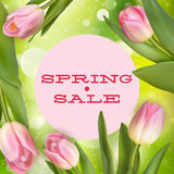 Spring sale card. EPS 10 Stock Image