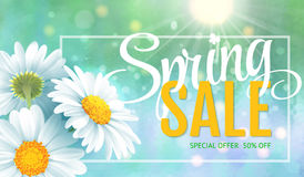 Spring sale concept. Summer background with chamomile and blue sky background. Template for banners, web, flyer, voucher Royalty Free Stock Photos