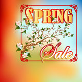 Spring sale design template with beautiful branch blossom Stock Photo