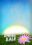 Spring Sale discount background template Royalty Free Stock Images