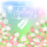 Spring sale floral background with blossoming branch Stock Photo