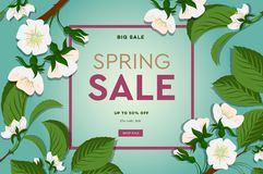 Spring sale floral banner with blooming cherry flowers on green background for seasonal design of banner, flyer, poster stock photos