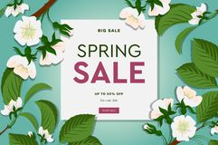 Spring sale floral banner with blooming cherry flowers on green background for seasonal design of banner, flyer, poster royalty free stock image