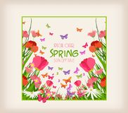 Spring sale flyer - sunny meadow with flowers and butterfly in the grass Stock Photos