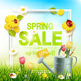 Spring sale flyer. Sunny meadow with flowers, ladybugs and watering can in the grass Stock Photos