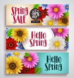Spring sale and hello spring vector banner set designs with colorful background. Templates and various daisy flowers for spring season discount promotion and vector illustration