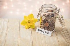 Spring sale money jar savings motivational concept on wooden board. Money jar savings motivational concept on wooden board with yellow daffodil flower with soft royalty free stock photos