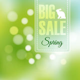 Spring sale poster with blurred background,  Stock Image