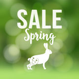 Spring sale poster with blurred background, silhouette of rabbit or hare and bokeh lights, vector illustration. Royalty Free Stock Photos