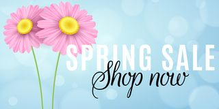 Spring sale. Seasonal shopping. Advertising web banner. Pink chamomile flowers on a blue background with lights bokeh. Vector illu stock illustration