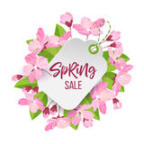 Spring sale tag. Spring sale lettering .Pink spring flowers framed sale tag. Cartoon style vector illustration isolated on white background Stock Image