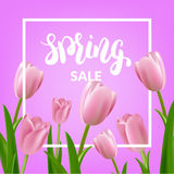 Spring sale. Tulips bouquet and spring calligraphy.  Royalty Free Stock Photos