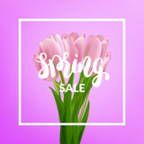 Spring sale. Tulips bouquet and spring calligraphy.  Stock Images