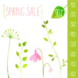 Spring sale vector green elements. Hand painted Royalty Free Stock Image