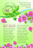 Spring sale vector poster of pink flowers Stock Images