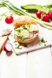 Spring sandwich Stock Images