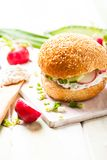 Spring sandwich Stock Image