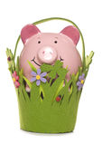 Spring saving piggy bank cut out Stock Photos