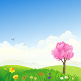 Spring scene. Illustration of a spring scenery with a pink tree Royalty Free Stock Photo