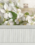 Spring scene wall background backdrop Stock Photography