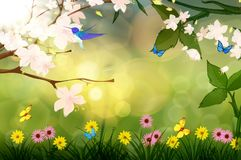 Spring scenery. This is a spring scenery with birds ,flowers and sunshine Royalty Free Stock Photography