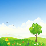 Spring scenery. Illustration of a spring landscape Royalty Free Stock Photos