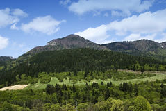 Spring scenery with mountain Stock Images
