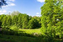 Spring scenery Stock Image