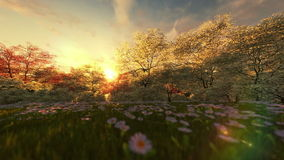 Spring scenery at sunrise, camera pan stock footage