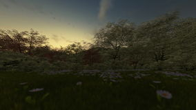 Spring scenery at sunrise. Panning, night to day stock video
