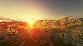 Spring scenery sunset, mountain and lake stock video footage