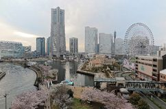 Spring scenery of Yokohama Minatomirai area with view of high rise skyscrapers Stock Image