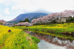 Spring scenery of Yufuin Royalty Free Stock Photography