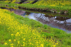 Spring scenery of Yufuin Royalty Free Stock Images