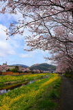 Spring scenery of Yufuin Stock Images